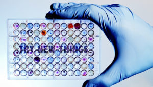 try new things on microplate assay