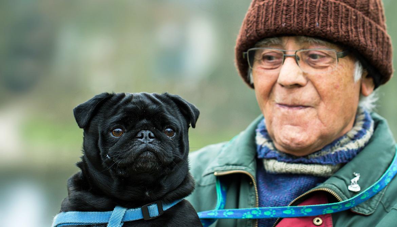 man with a pug