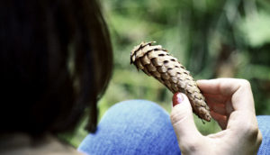 woman holds pine cone in hand