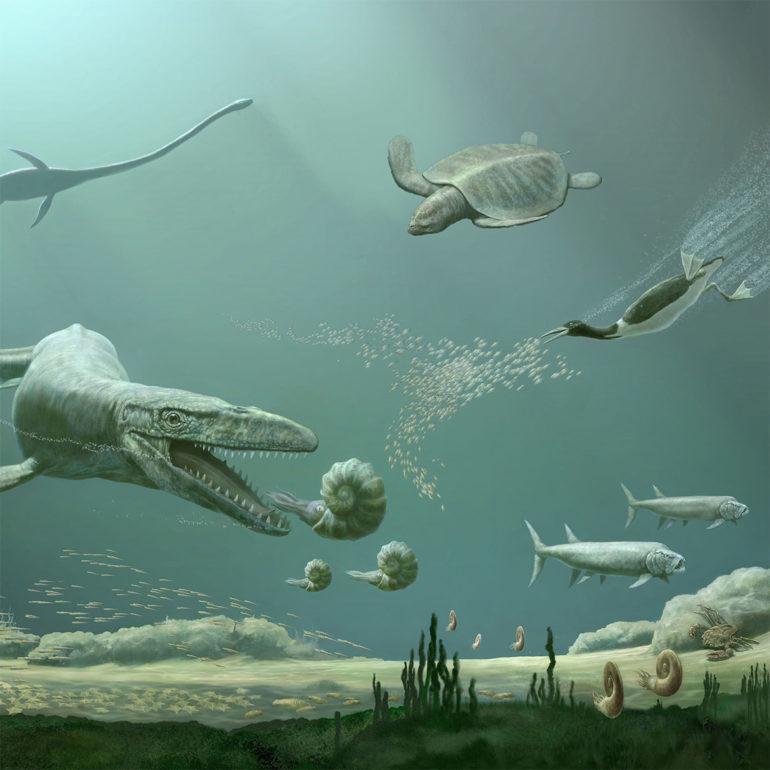 marine tetrapods