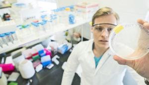 petri dish and researcher