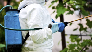 person in suit sprays insecticide