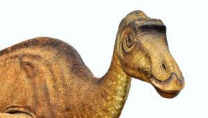 Maiasaura replica