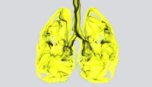 abstract lungs