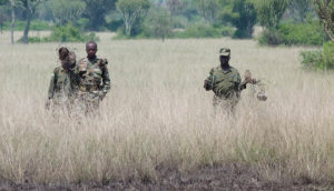 rangers on patrol