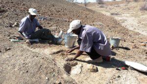 stone tool excavations