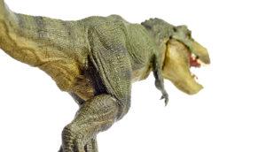 toy t rex on white