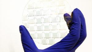 molybdenum disulfide wafer
