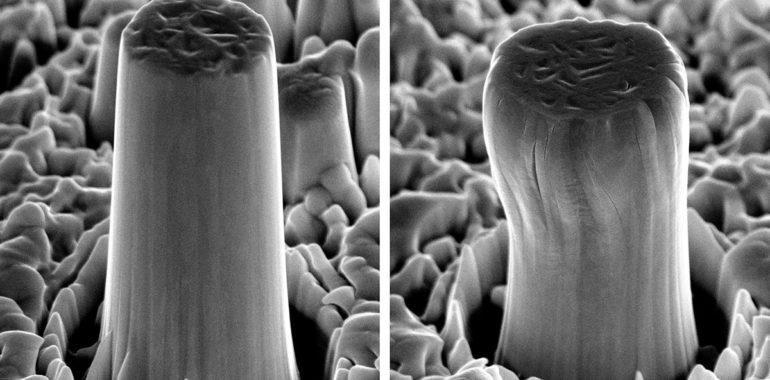 micropillars compressed