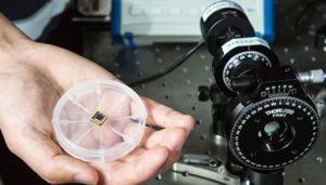 polarized light detector on a chip