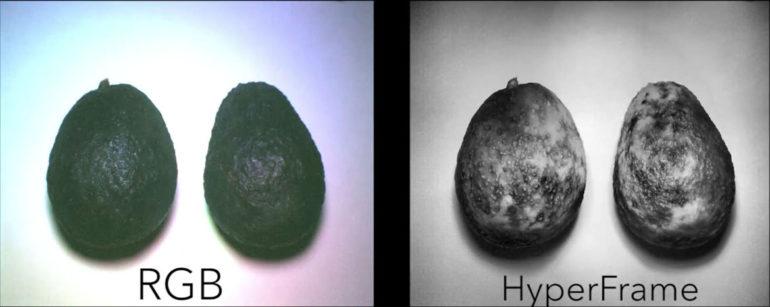 avocado with Hypercam