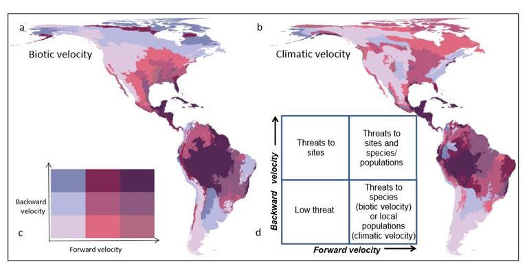 map of biotic velocity