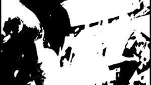 black and white hallucination image