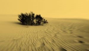 creepy sand dunes in black & orange