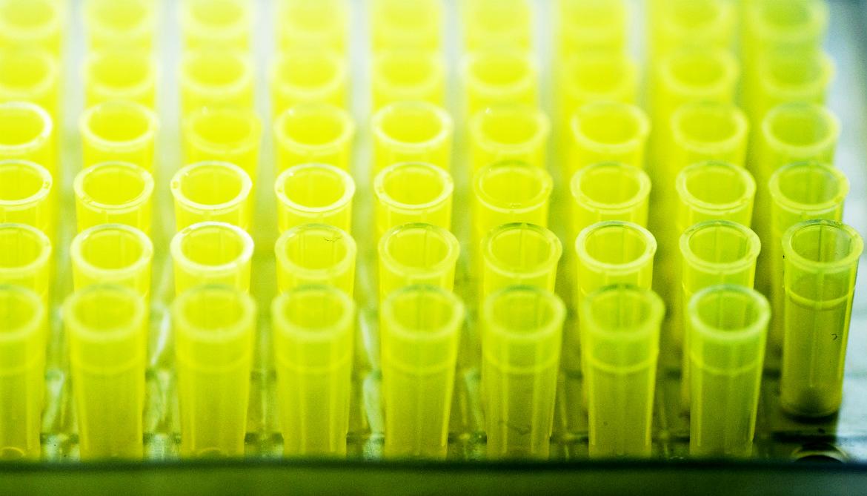 Can genetic testing prevent methadone deaths?
