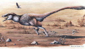 Dakotaraptor illustration
