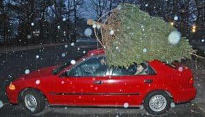 christmas tree on top of car