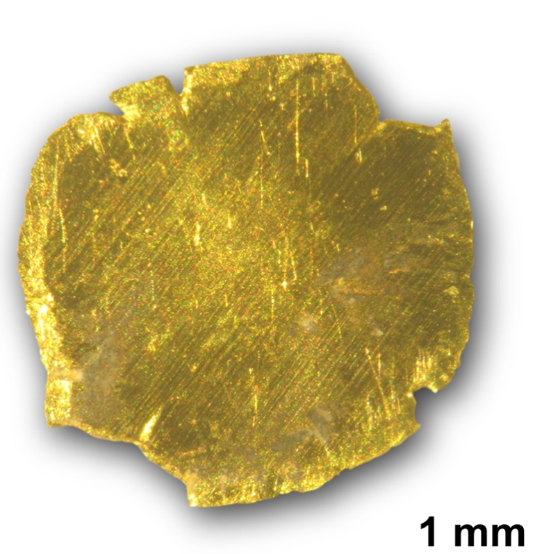 Gold removed and recovered from polluted water