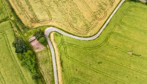 curve in dirt road in fields