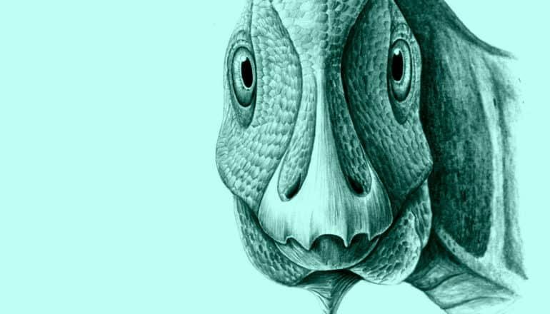 Telmatosaurus transsylvanicus