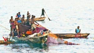 fishers on Lake Tanganyika