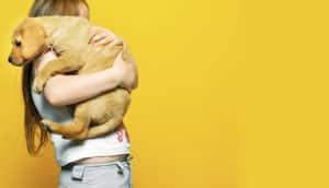 girl and dog on yellow