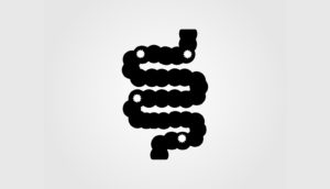 gut bacteria illustration