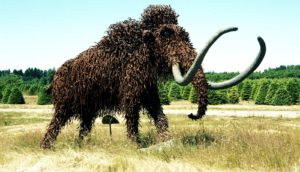 woolly mammoth sculpture