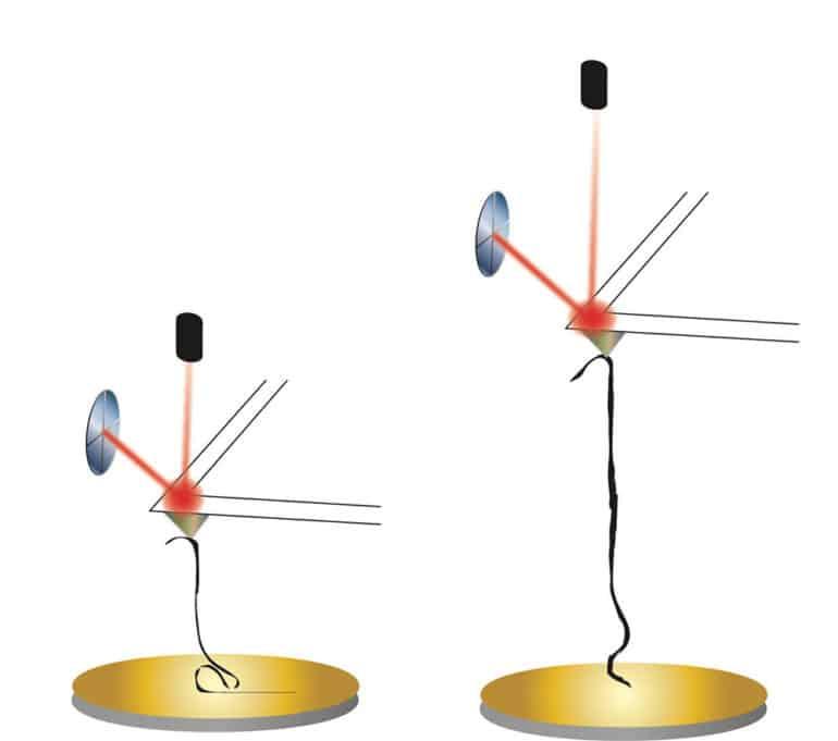nanoribbon experiment illustration