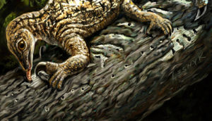 Drepanosaurus illustration