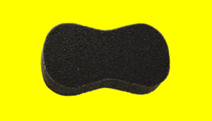 isolated sponge