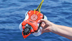 tracking device for whales