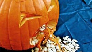 Halloween jack o lantern barfs