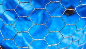 chicken wire on blue