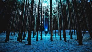 blue light in forest