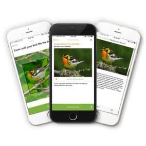 Merlin Bird Photo ID app