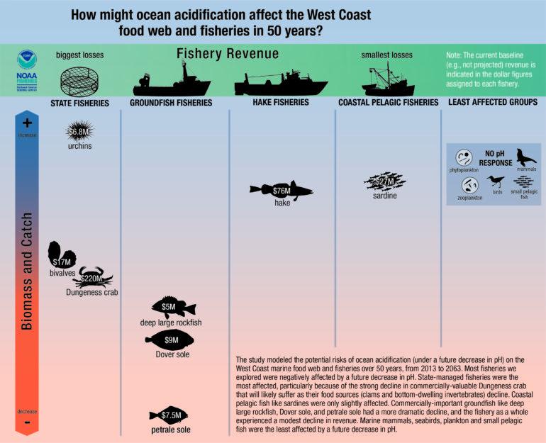 fisheries graphic via NOAA
