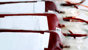 bags of donated blood