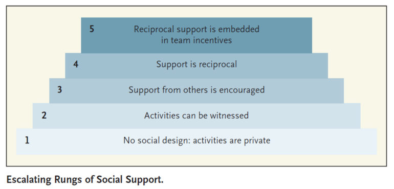rungs of social support diagram