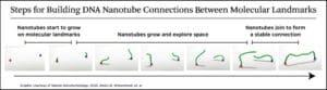 nanotube bridge graphic
