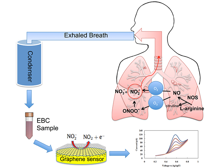 graphene-based asthma device graph