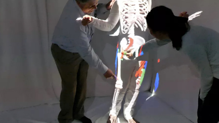 augmented reality projection of anatomy