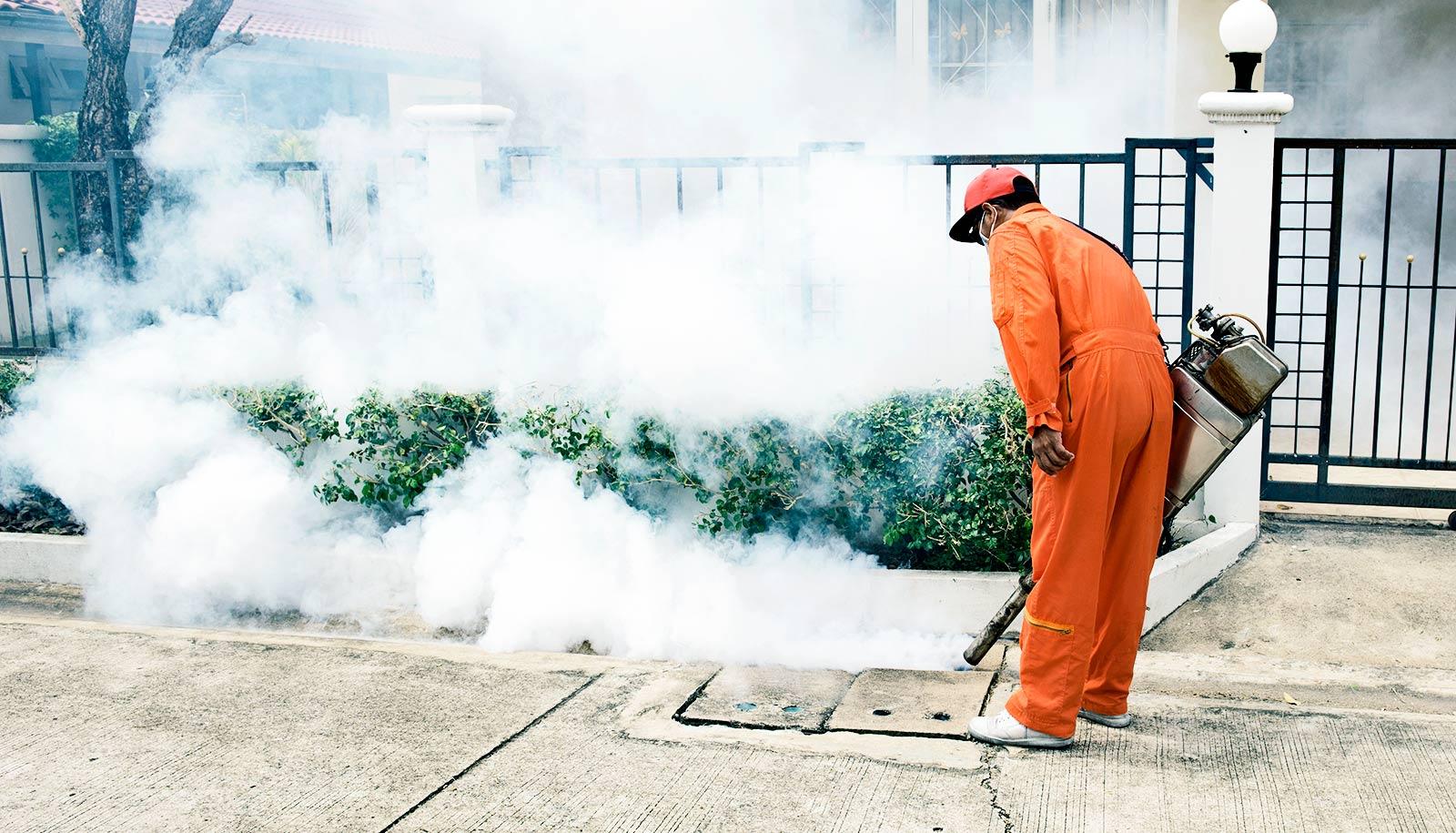Crystal DDT could be a safer bug-killer - Futurity