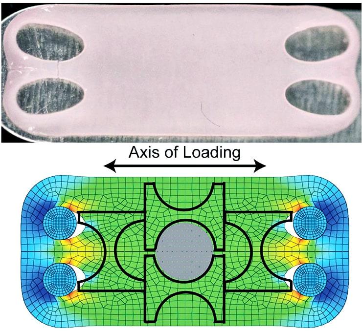 artificial, lab-grown cartilage