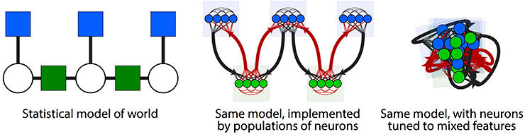 neuroscience models in graphic