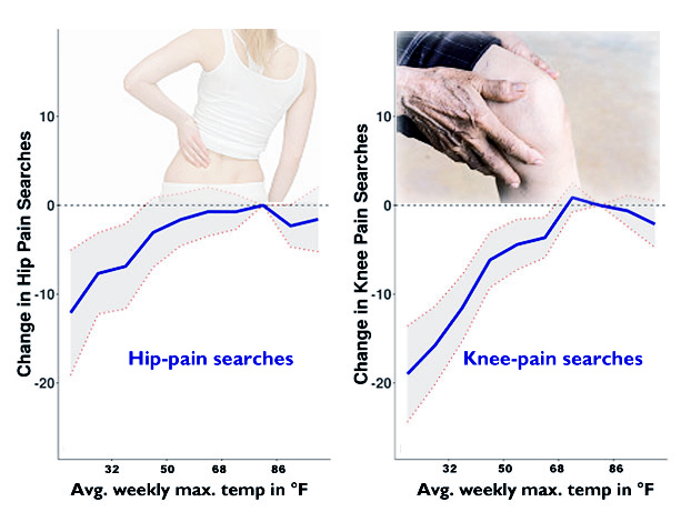 hip- and knee-pain searches