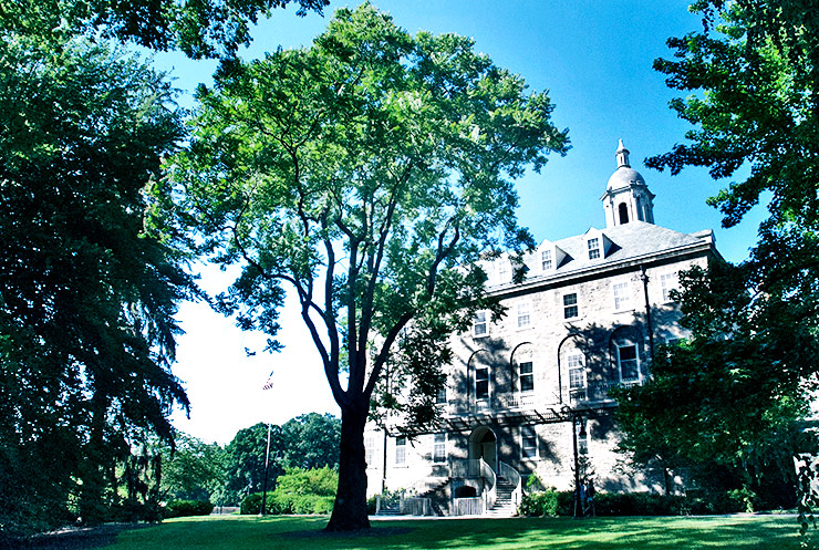 tree-of-heaven on Penn State campus