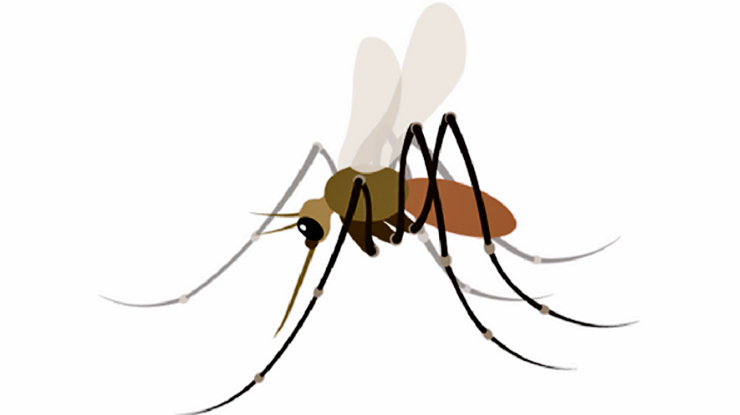 mosquito emoji idea
