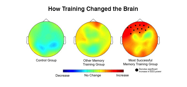 EEGs compare brain training methods