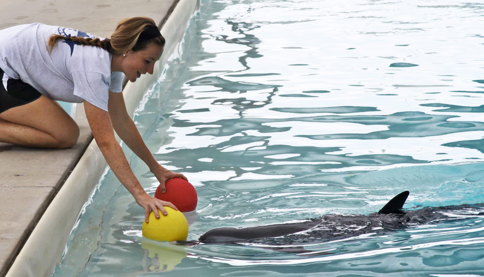 researcher plays with Moonshine the dolphin